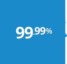 99.9% Uptime Hosting
